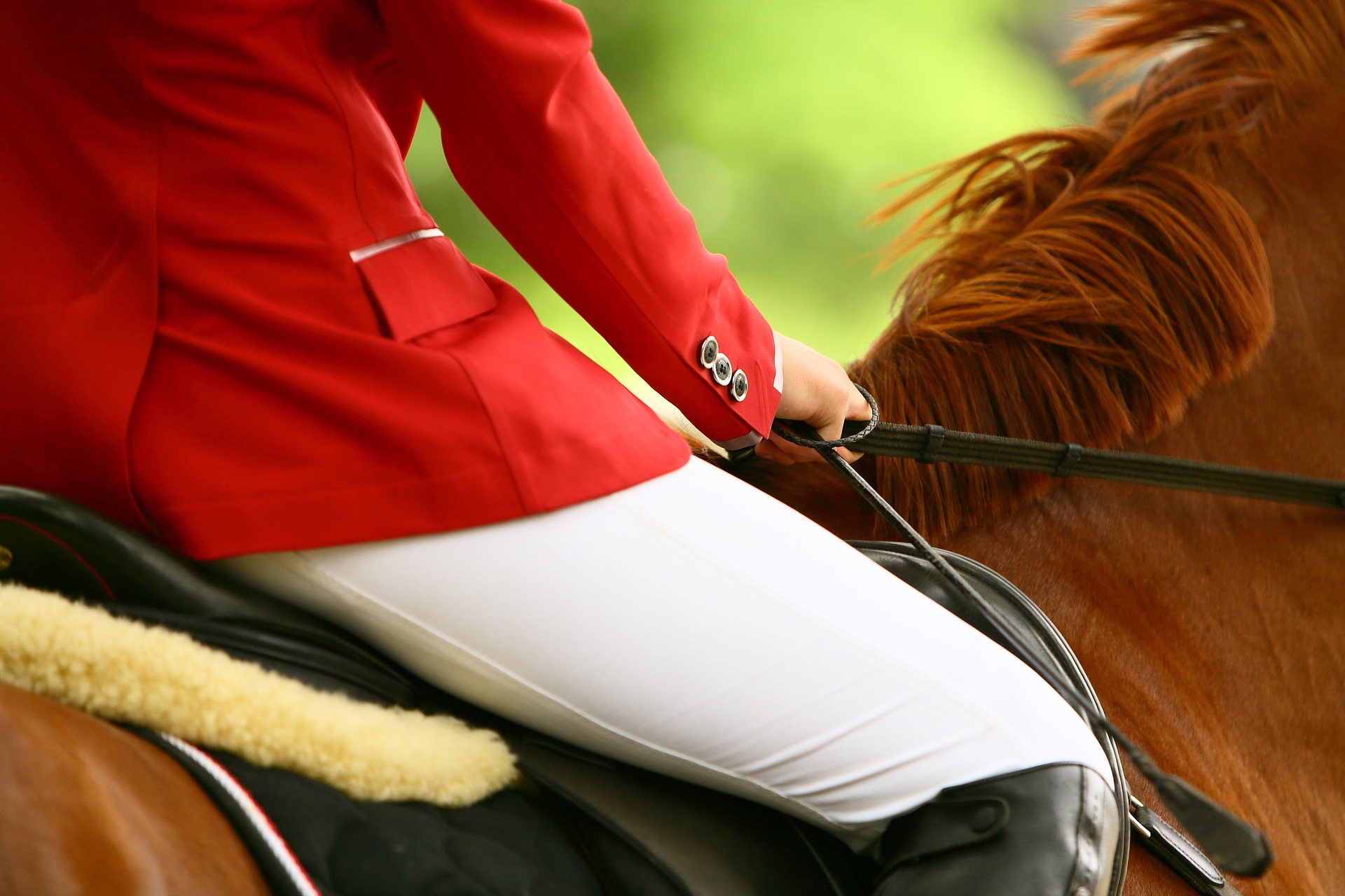 A Showjumping Girl Who Has Received Residential Homeschool Tuition